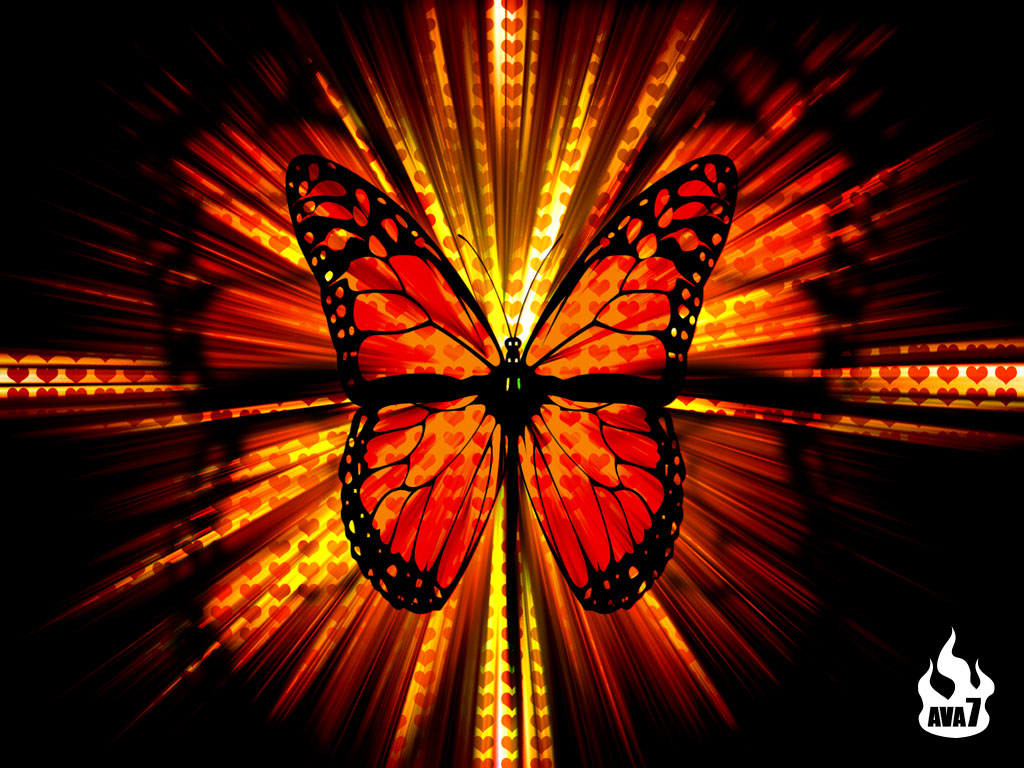 Butterfly wallpaper 3d wallpaper nature wallpaper for In wallpaper
