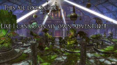 Guild Wars 2 World