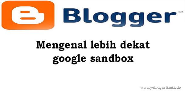 Mengenal lebih dekat google sandbox