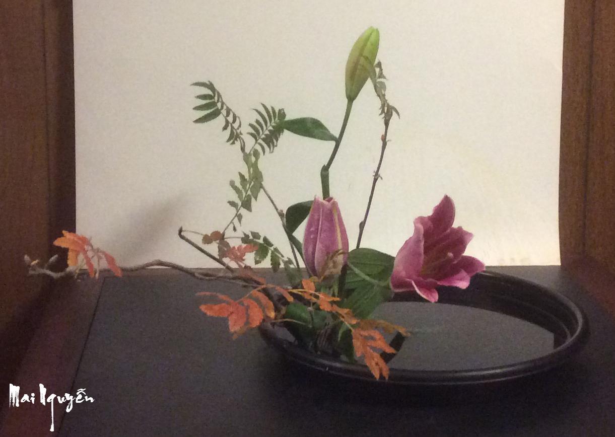 Nghệ thuật cắm hoa Nhật Bản - Nắng Mai