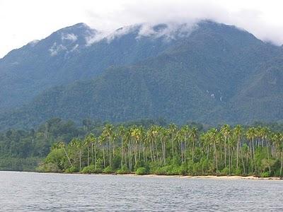 pulau seram ambon
