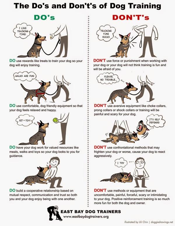 Scientific Dog Training Methods
