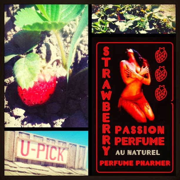 Strawberry Passion Video Review by EauMG
