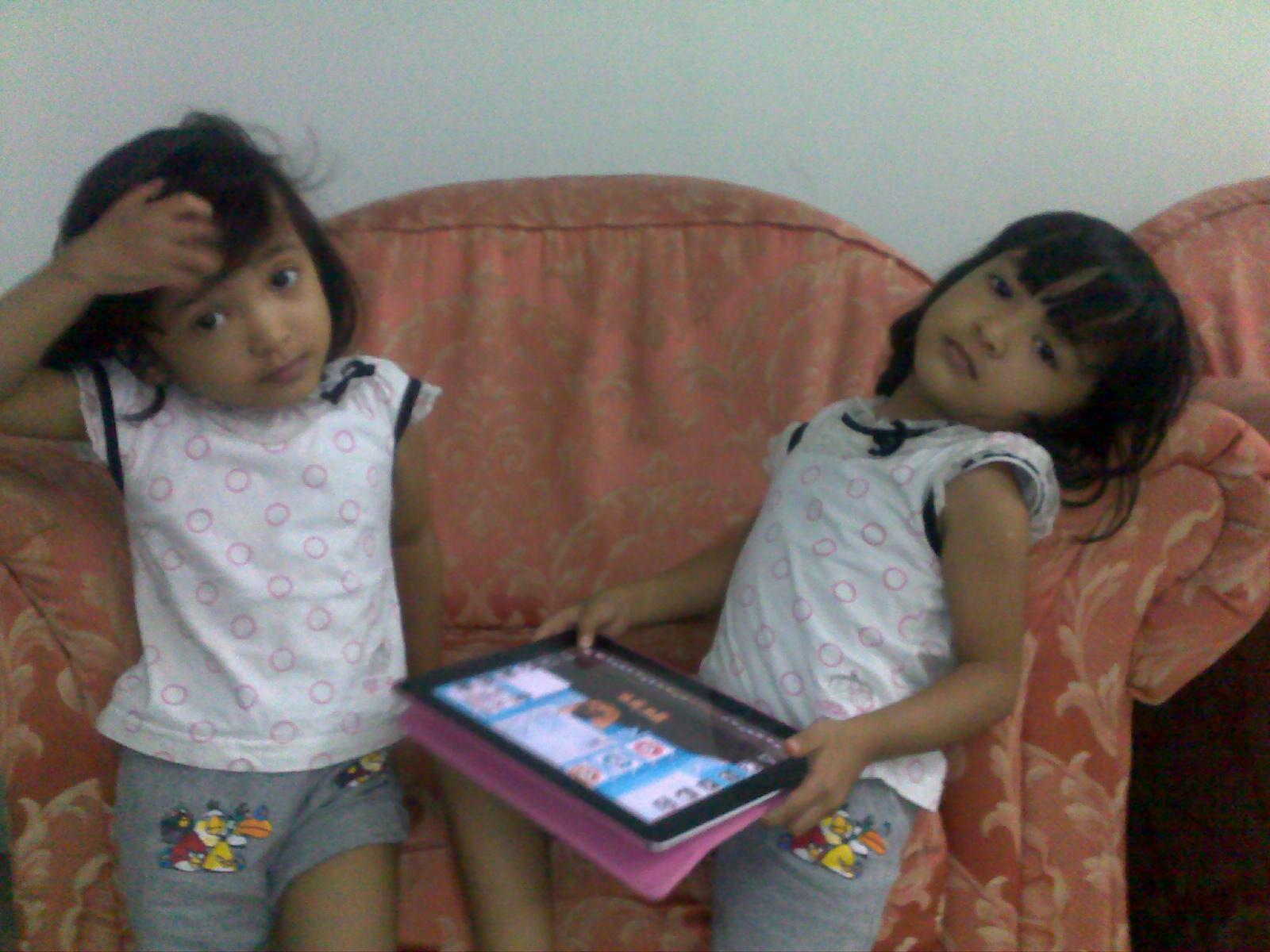 Geng Kembar Dot Com Kisah Kisah Anak Kembar Yang Mencuit