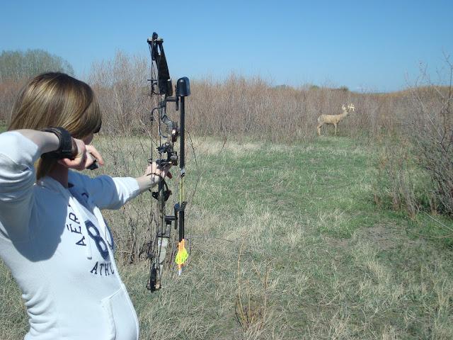 Archery 3D Target Shooting