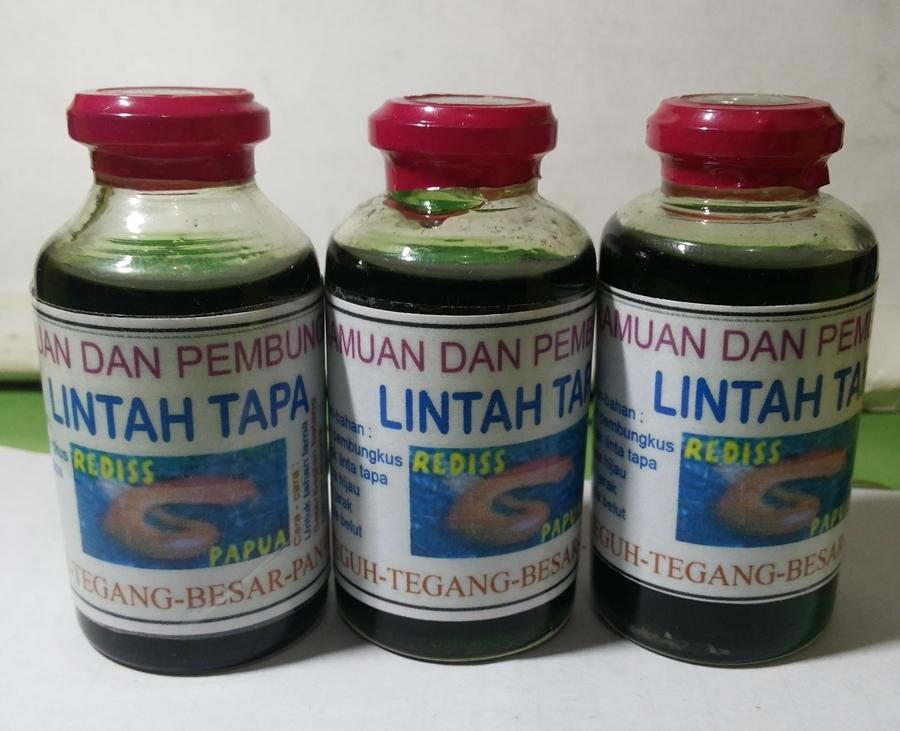 ramuan pembesar penis minyak lintah tapa papua