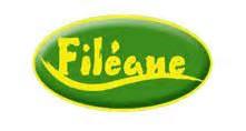 Filéane