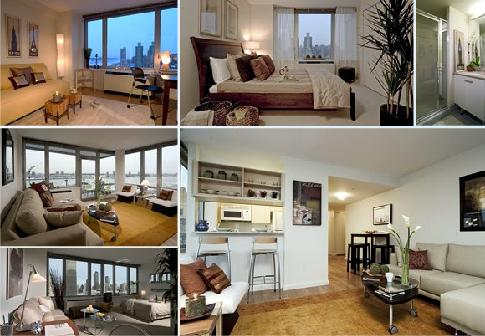 affordable apartment rentals in nyc everything you need to know