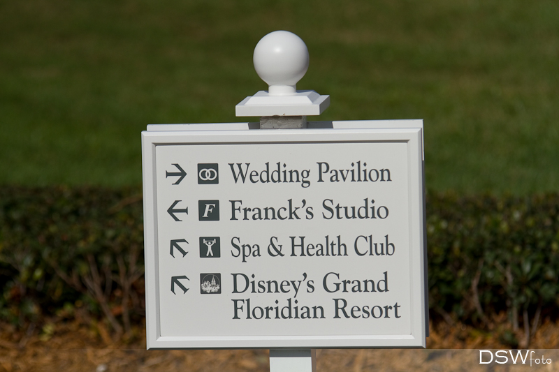 I know that many of you are familiar with quite a few of our Disney Wedding