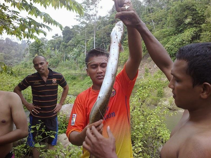 """Belut Sungai Blang kolam""""Expedisi Kreung Blang Kolam"""""""