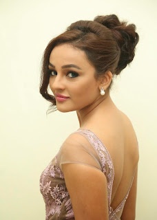Actress Seerat Kapoor Pictures in Long Dress at Tiger Audio Launch  24