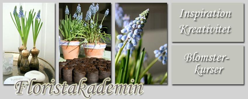 Floristakademin - Blomsterkurser, blommor och inspiration