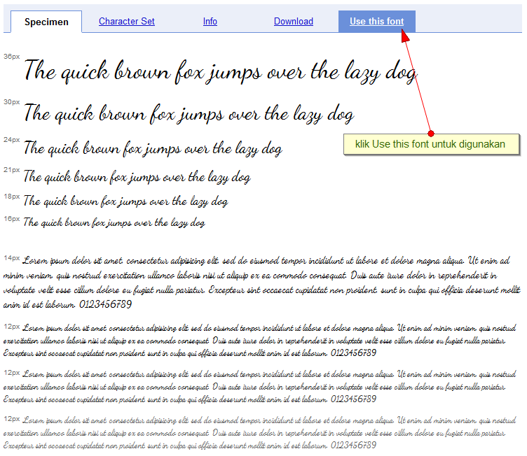 how to use google web fonts in css