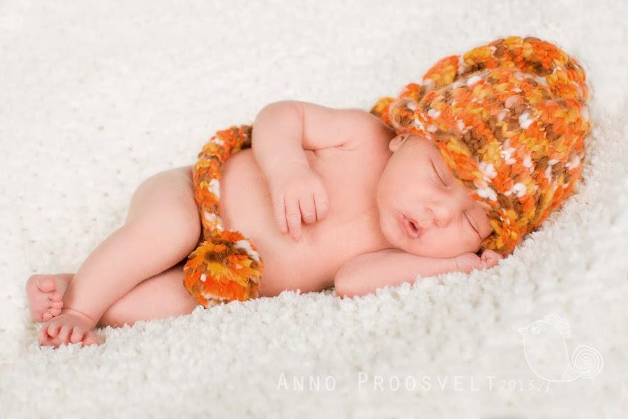newborn-fotopesa-fotostuudio