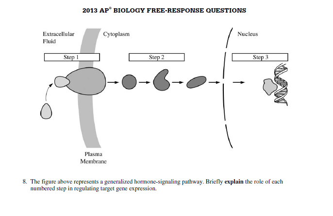 Ap biology essay questions answers