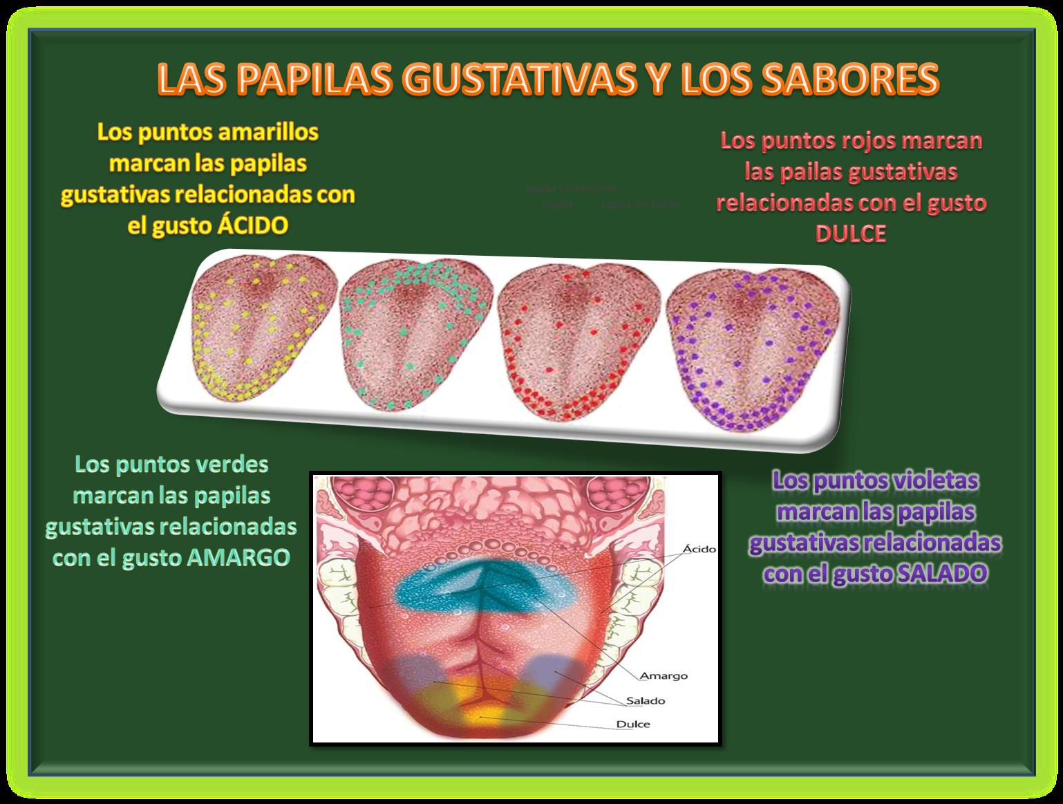 Cs. Biológicas Online 2