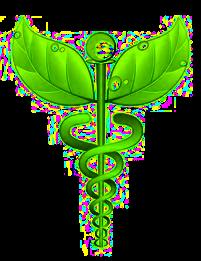 Caduceu da Terapia Holística