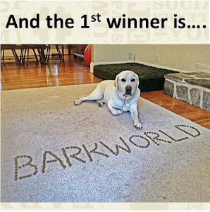 I won a trip to BarkWorld!