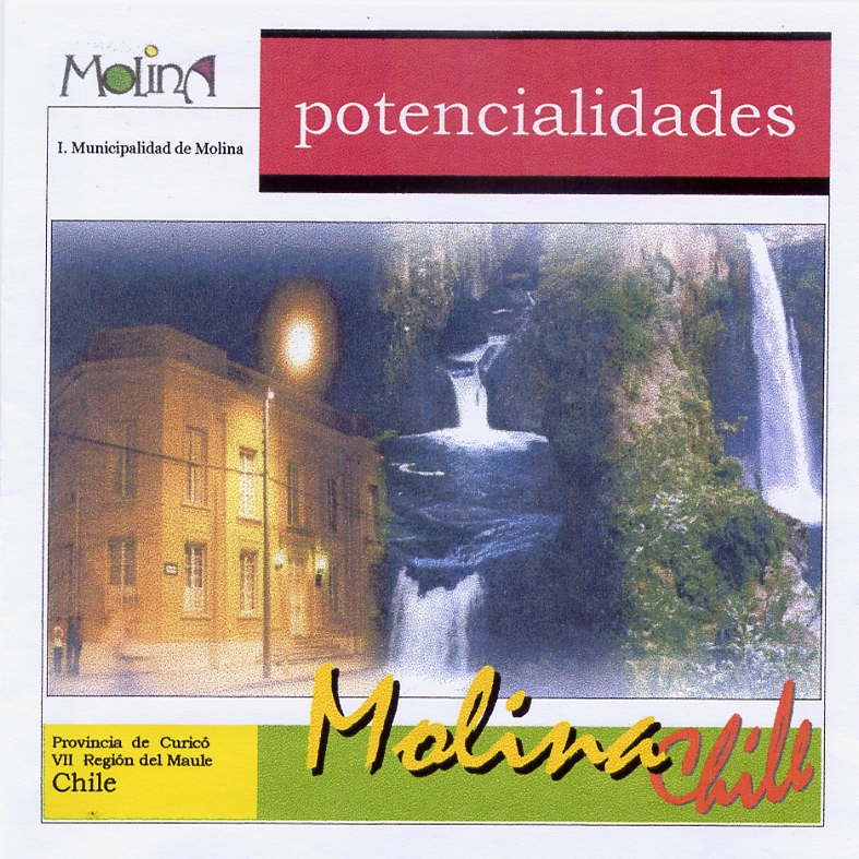 PLAN CITY MARKETING MOLINA - 2000