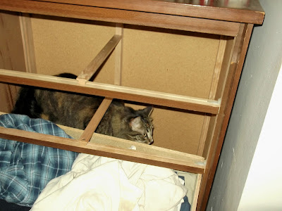 Emerald in the dresser cabinet