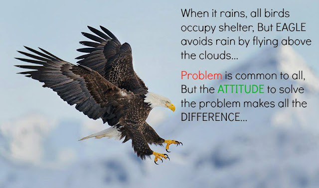Be Like An Eagle, eagle , Positive Attitude, ATTITUDE