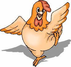 Peluang bisnis ternak ayam