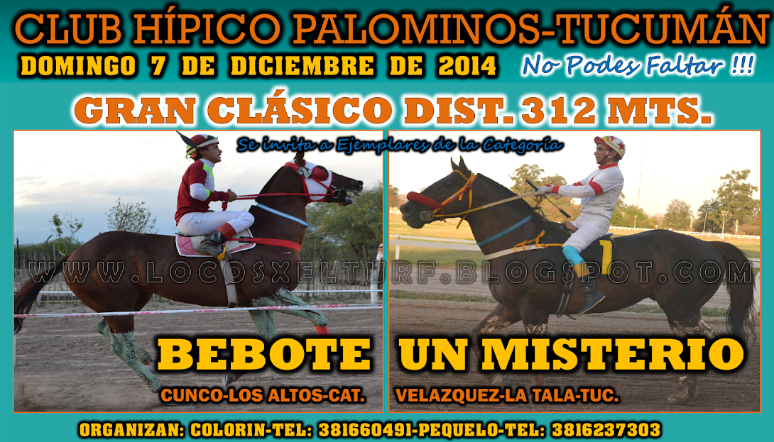 07-12-14-HIP. PALOMINOS