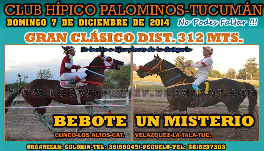 07-12-14-HIP. PALOMINOS