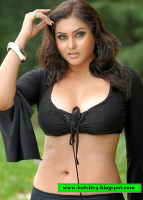 Hot Indian Actress 2014 Photo