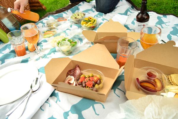 La chica de la casa de caramelo de picnic en la campi a - Platos para picnic ...