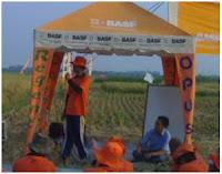Pt. Basf Adakan Acara Farmers Field Day Bersama Petani Kecamatan Sliyeg