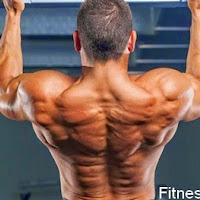 افضل 5 تمارين لزيادة ضخامة عضلة الظهر