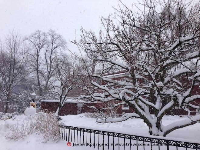 176 Que bonito apalear nieve!