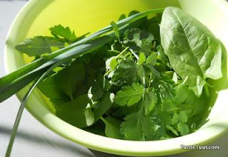 image verse groentjes