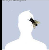 Muha na glavi