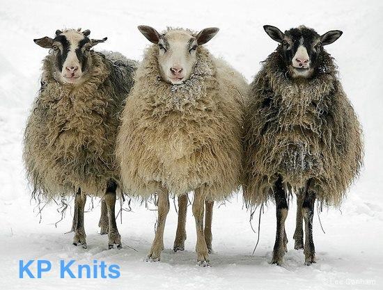 KP Knits