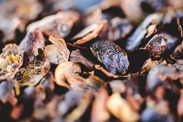 Cascara Tee - getrocknete Kaffeekirschen