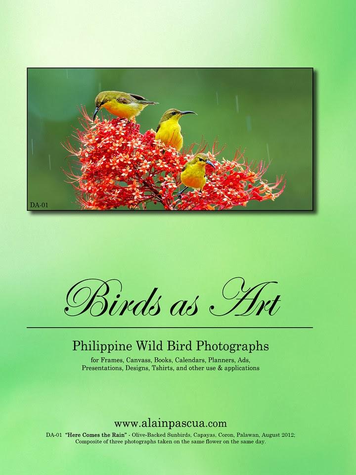 ARTE EN FILIPINAS