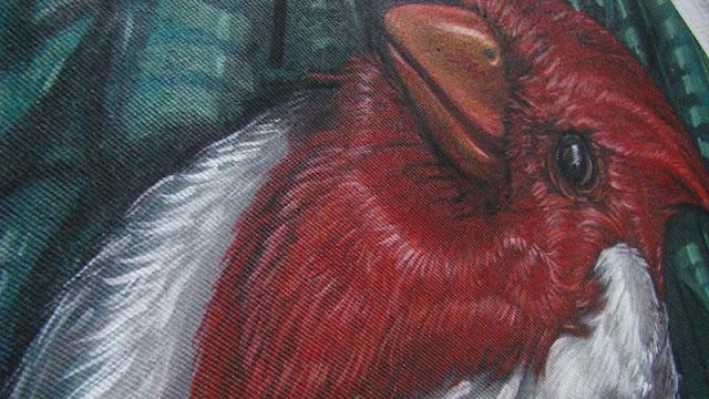 cardenal det