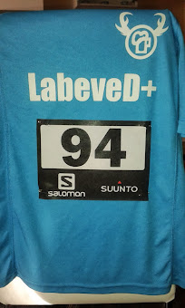 Team Labeve D+