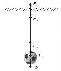 Pengertian, Rumus dan Bunyi Hukum Newton 1, 2, 3 serta Contoh Soal Hukum Newton