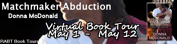 Matchmaker Abduction by Donna McDonald