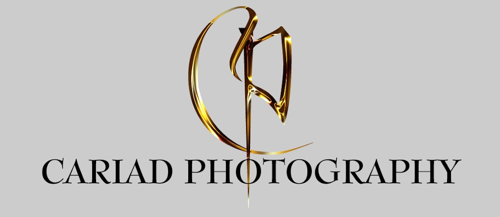 Cariad Photography Blog