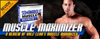 muscle maximiser