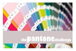 The pantone challenge