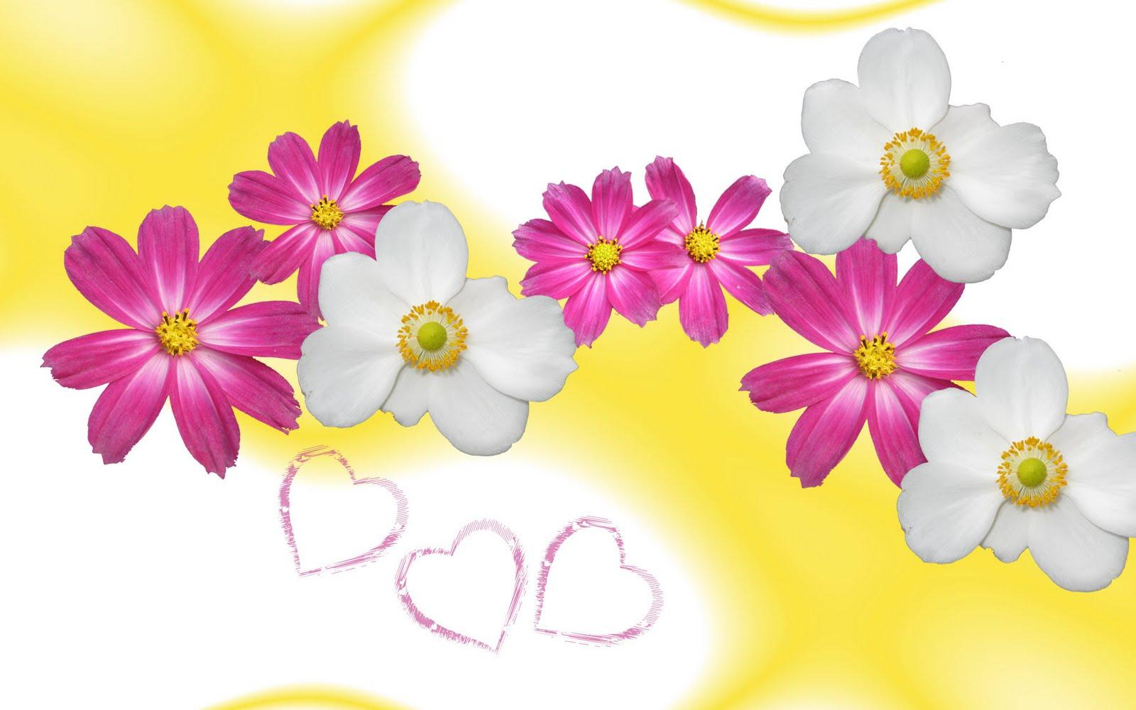 http://4.bp.blogspot.com/-zwrUv5fexGI/TdllAiu2vPI/AAAAAAAAQKg/F_OKHGBrQQc/s1600/flower-wallpaper-yellow-in-love.jpg