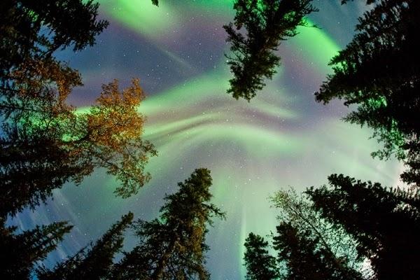 EKSKLUSIF: Ketika Badai Aurora Mempercantik Bumi