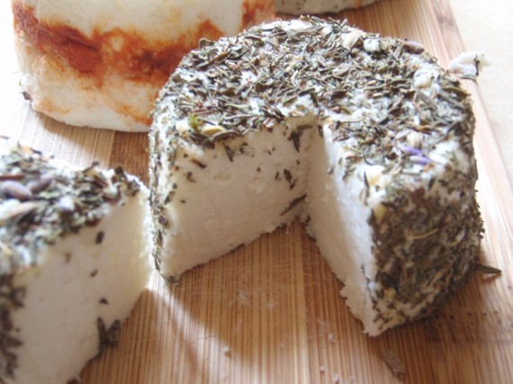 ricotta paneer and queso blanco ch/èvre Grow and Make DIY Artisan Cheese Making Kit Learn how to make home made mozzarella Basic