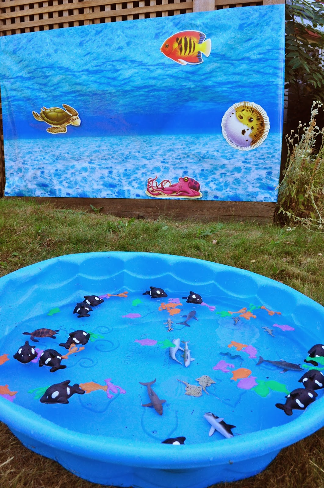 Stream Of Consciousness Under The Sea 6th Birthday Party