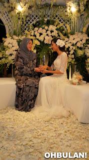 Gambar Pertunangan Liyana Jasmay